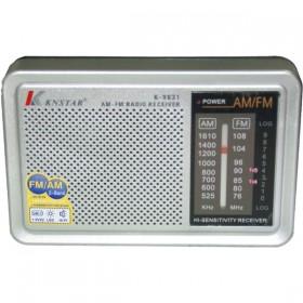 KNSTAR K-9831 Παγκόσμιας λήψης